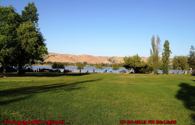 Paseo Padre Pkwy Lake Elizabeth