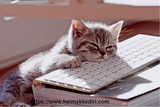 jenuh dan bosan saat ngeblog