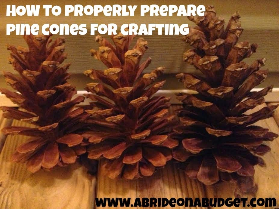 Believe it or not, you can't just take pine cones from the ground and use them in crafts. You have to prepare them first. Find out how from www.abrideonabudget.com.