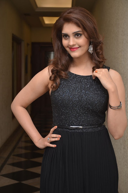 Surabhi at Gunturodu Audio Launch Stills