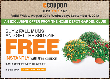 picture relating to At Home Coupon Printable named Household Depot Coupon codes Printable