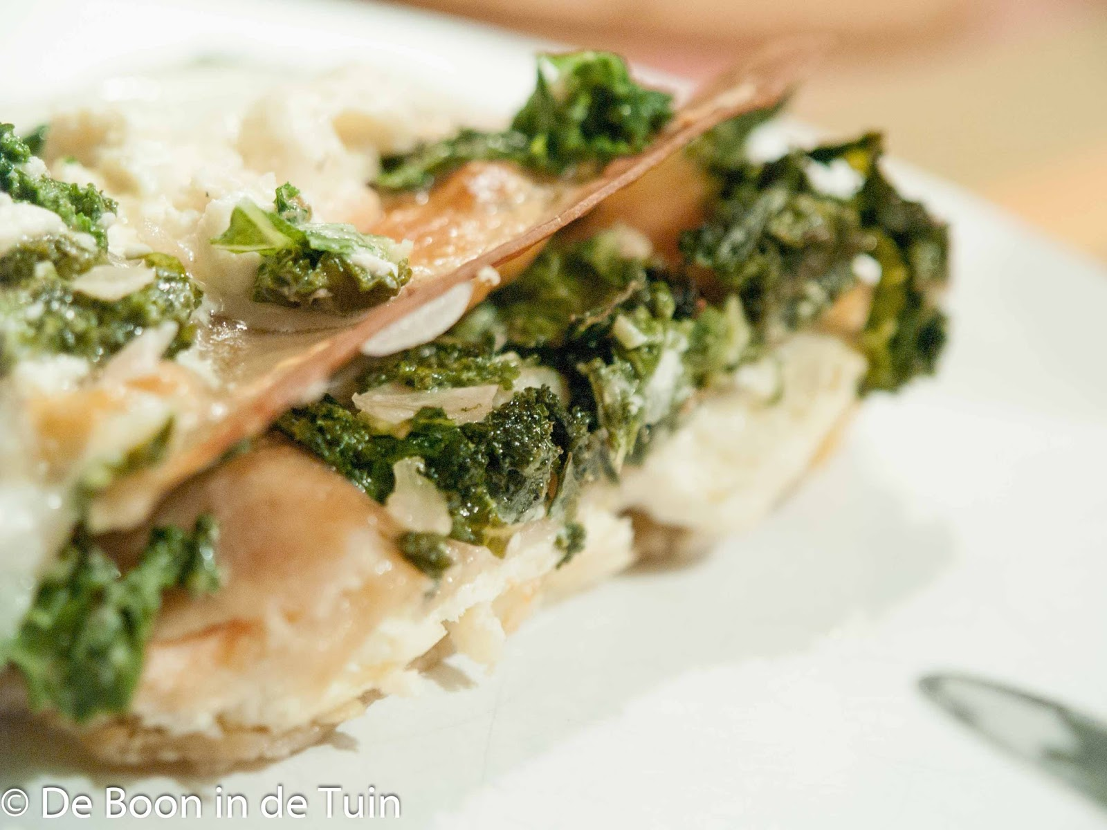 pasta lasagne boerenkool zalm ricotta recept