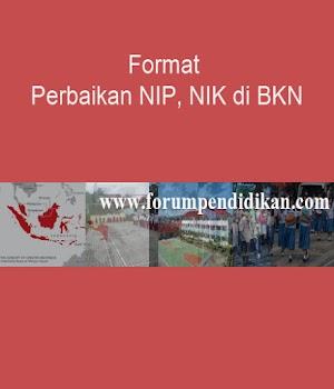 Format Perbaikan NIP, NIK di BKN | Dapodik