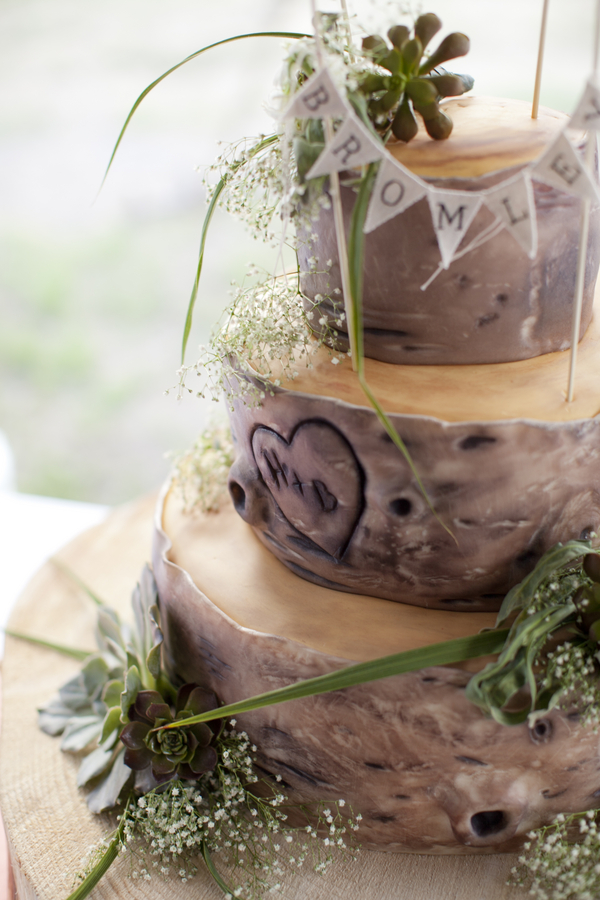 rustic+bridesmaid+bridesmaids+dresses+bride+bridal+groom+grooms+wedding+shabby+chic+orange+green+pink+cake+mason+jar+jars+bouquet+wood+woodland+woods+tracy+moore+photography+18 - Succulents & Bark