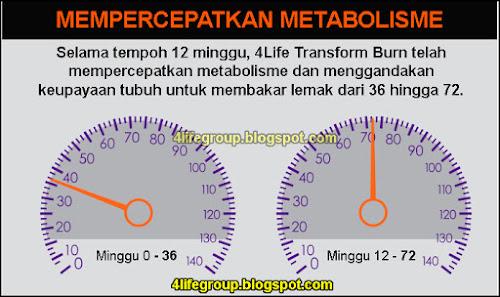 foto 4Life Transform Burn - Mempercepatkan Metabolisme