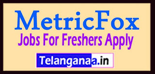 MetricFox Recruitment 2017 Jobs For Freshers Apply