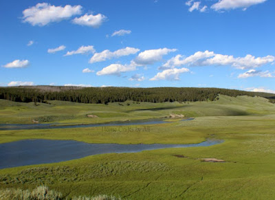yellowstone river at hayden valley looking for wildlife