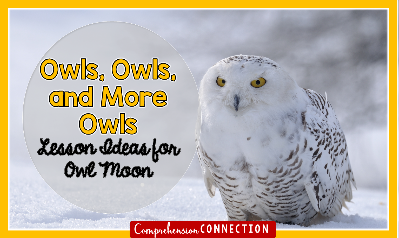 Owl Moon is a favorite winter text. This post shares ways you can use this text for teaching plot, figurative language, character change and more