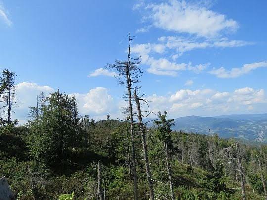 Widok ze Średniego Gronia na drugi wierzchołek z wieżą widokową.