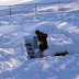 Dog Adorably Cheats In Snow Maze