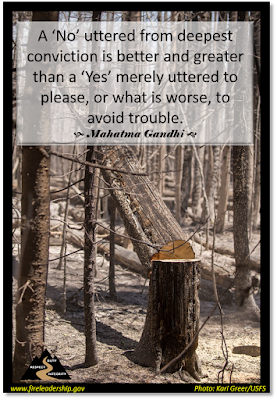 "A 'No' uttered from deepest conviction is better and greater than a 'Yes' merely uttered to please, or what is worse, to avoid trouble."" —Mahatma Gandhi (Stand of burned trees)"