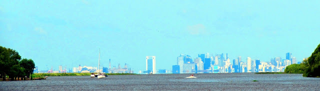Argentina; Tigre; Delta del rio Paraná; Paraná; parque natural; natural park; parc naturel; Puerto Madero; Buenos Aires
