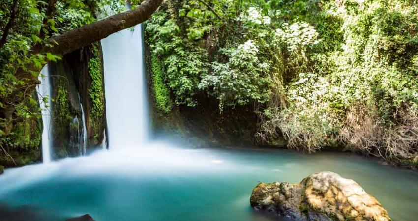 waterfall jewish singles In 1909 sixty six jewish families who resided in  proceed to ein gedi and david's waterfall it is  sign up for this singles trip .