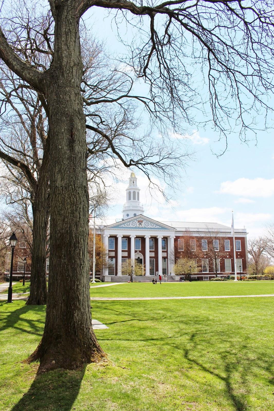 bijuleni - Harvard School of Business Library