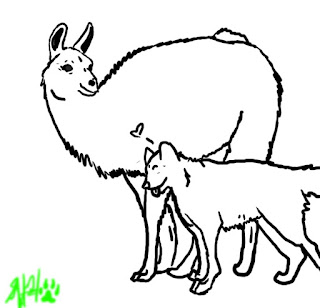 Cute Wolf Love Llama Coloring Sheet Animals