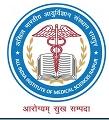 AIIMS Raipur Recruitment 2020-19 Apply www. aiimsraipur.edu.in