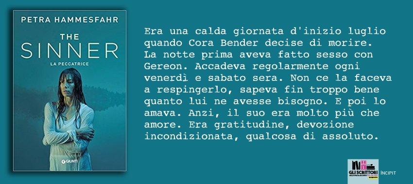 The Sinner. La peccatrice, di Petra Hammesfahr: incipit