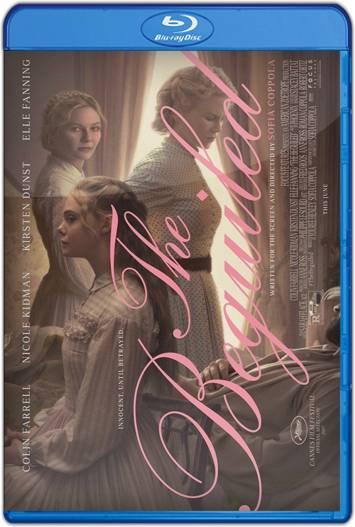 El seductor (2017) HD 1080p y 720p Latino