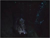 Glowworms in Motion - su Andare Oltre