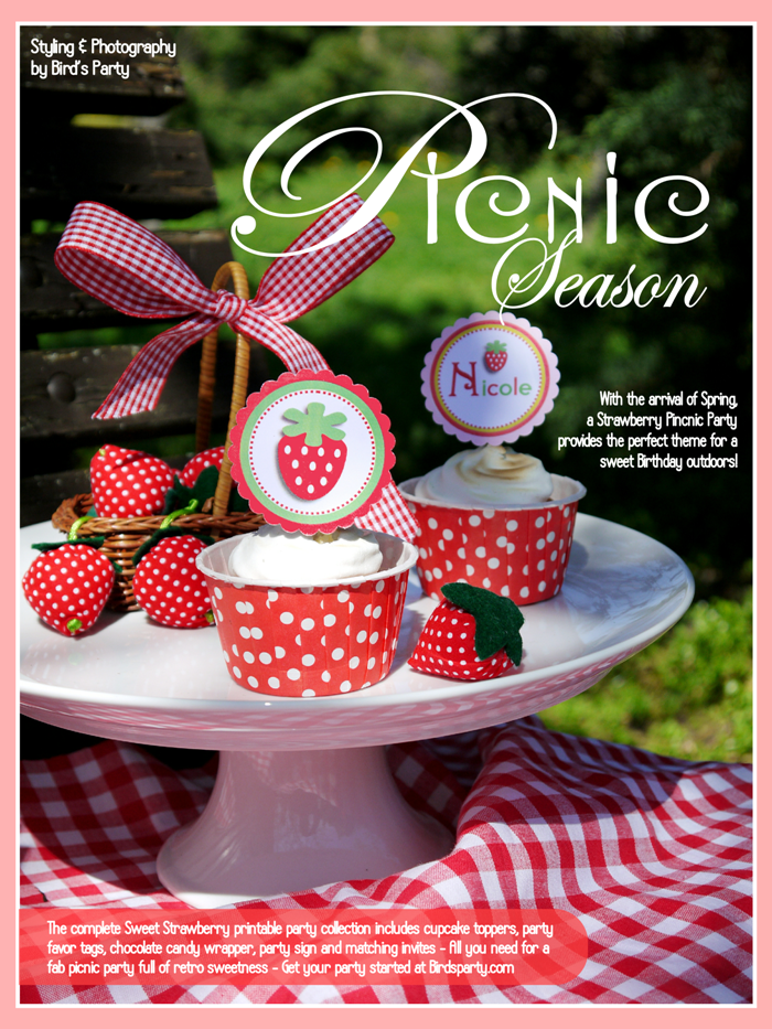 Sweet Strawberry Picnic Party Ideas - BirdsParty.com