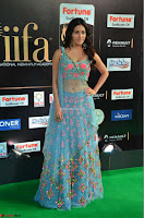 Amyra Dastur in Flower Print Choli Transparent Chunni at IIFA Utsavam Awards 23.JPG
