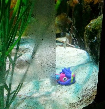 Moshi Monsters hiding at Sea Life, Trafford Park, Manchester.