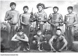 Tribo Arawak-5