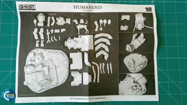 HUMANOID - Nuts Planet