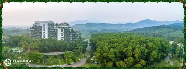 Với Forest In The Sky - bài toán phát triển du lịch bền vững của Flamingo Group đã có lời giải
