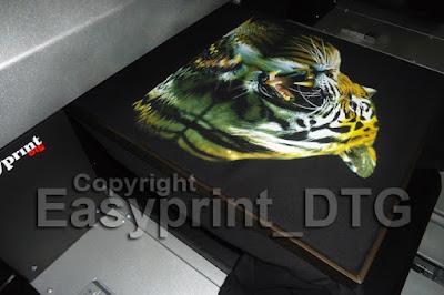 Printer DTG Bali