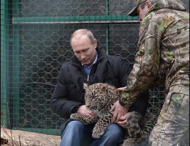 Vladimir Putin Russian President HD Wallpaper Photo Images