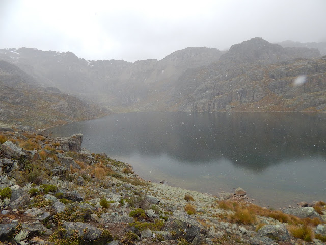 Laguna Yanaulla trekking