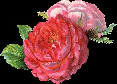 http://3.bp.blogspot.com/-ITP1Mz-iTQA/T5r6n_2n-0I/AAAAAAAAAbs/Uq8LChxB78Q/s230/ephemera_flowers_09.png