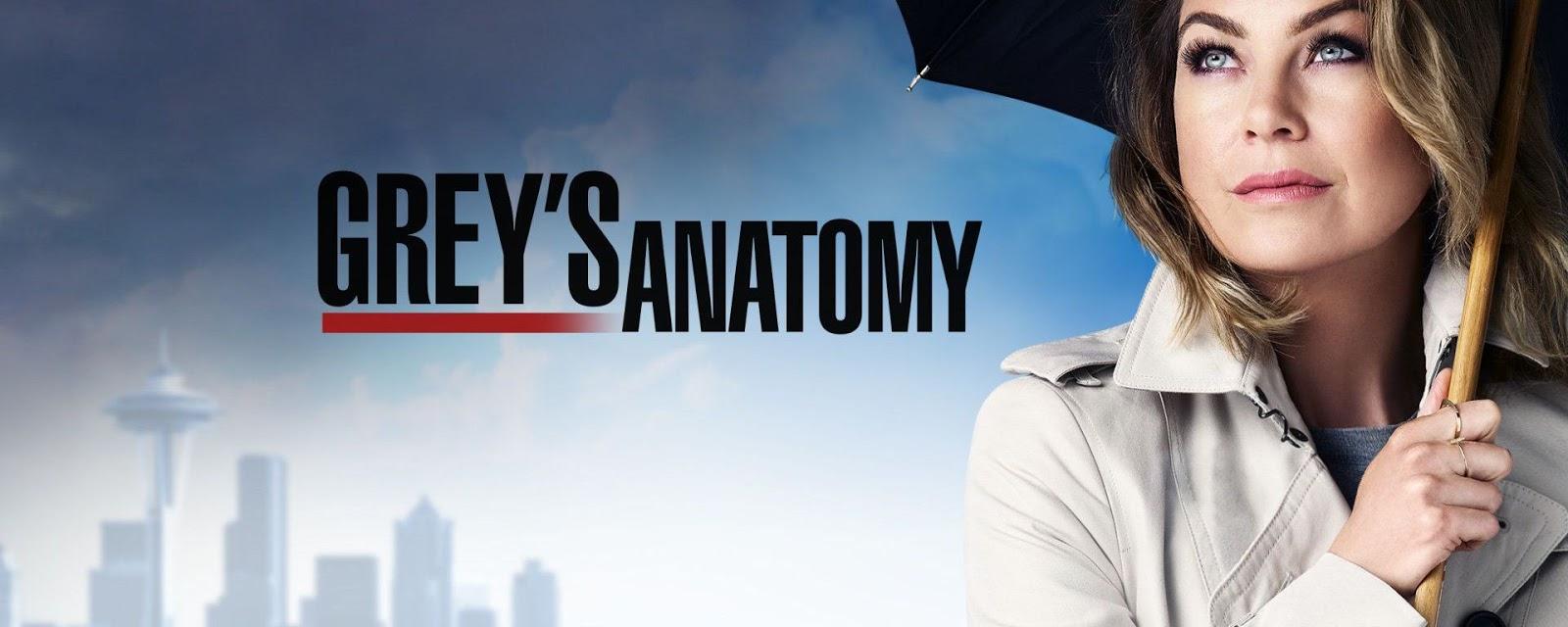 Grey\'s Anatomy 14x08 - De la nada | Resumen