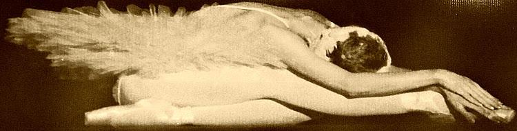 Balé: biotipo e flexibilidade são imprescindíveis!