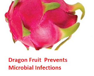 Dragon Fruit  Prevents Microbial Infections
