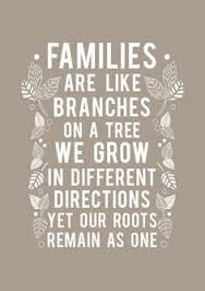 Quotes About Family you will too: are like branches on a tree