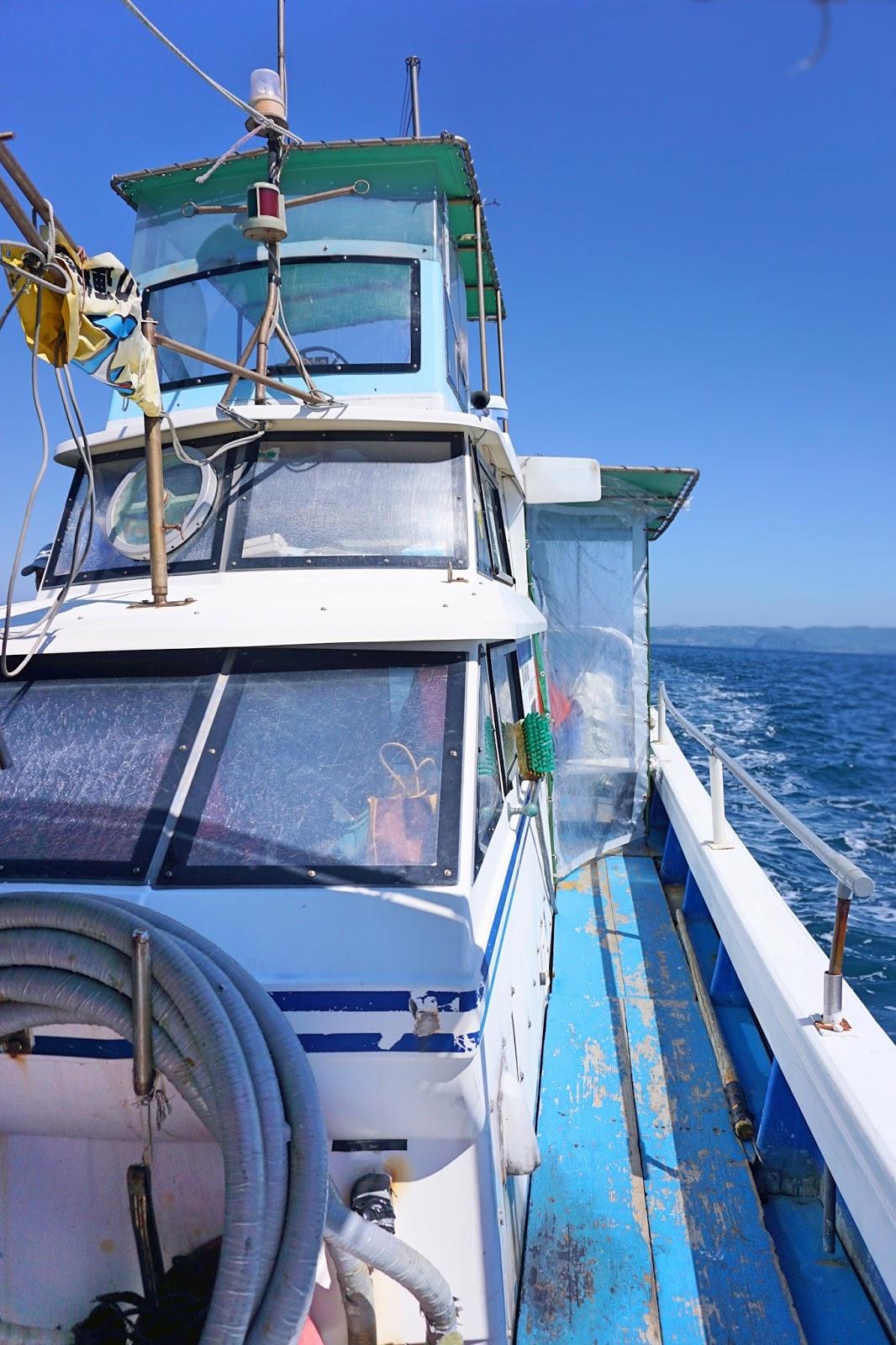 9 days of rustic kyushu, day 4 (part 1): dolphin cruise + unzen
