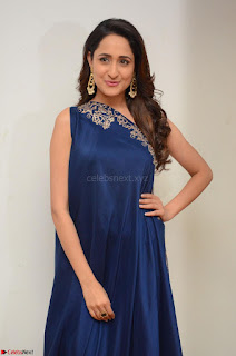 Pragya Jaiswal in beautiful Blue Gown Spicy Latest Pics February 2017 064.JPG
