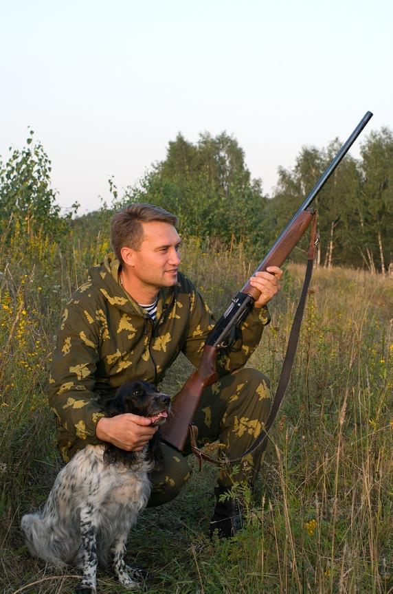 Training Gun Shy Hunting Dog