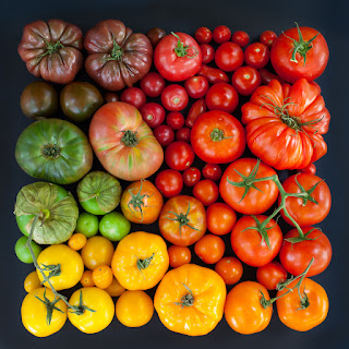 tomato day cream - le reve spa