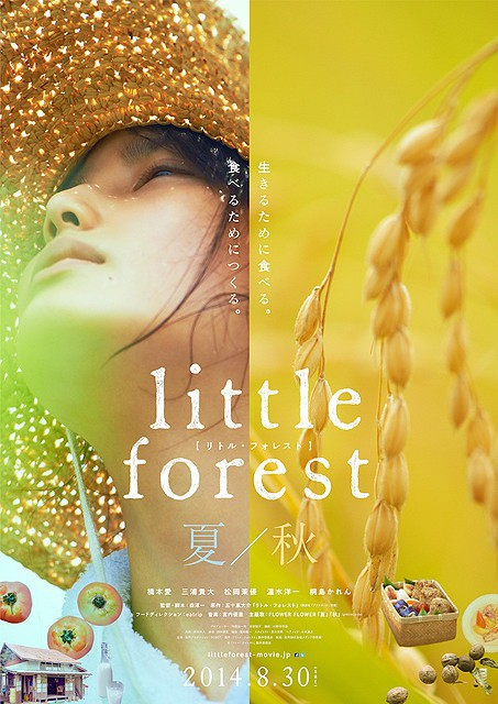Sinopsis Little Forest: Summer & Autumn (2014) - Film Jepang