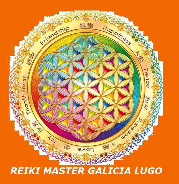 Reiki Master Galicia El Significado Del Símbolo De La Flor De La Vida