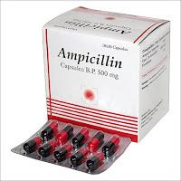 Obat-Antibiotik-Sipilis-Ampicillin.jpg