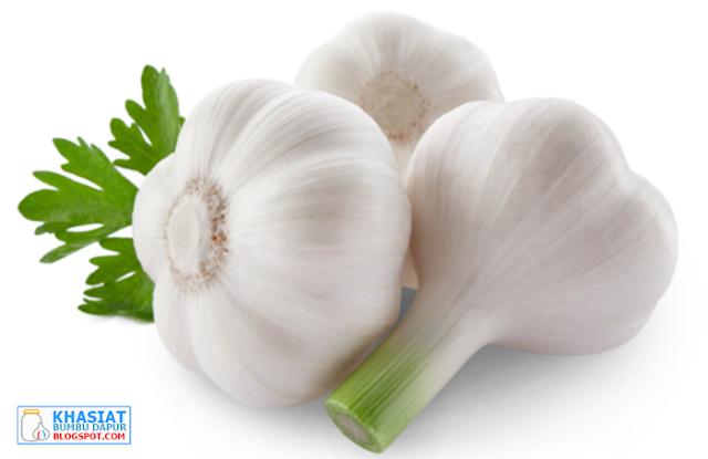 Khasiat Bawang Putih Untuk Mengobati Sakit Gigi Manjur dan Alami