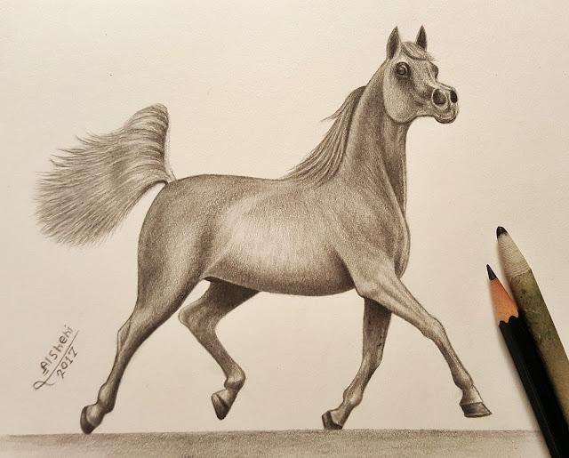 رسم حصان