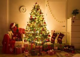 Welkom In De Berenklas Een Warme Kerst En Een Spetterend 2019