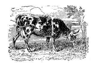 cow farm digital transfer clip art illustration download