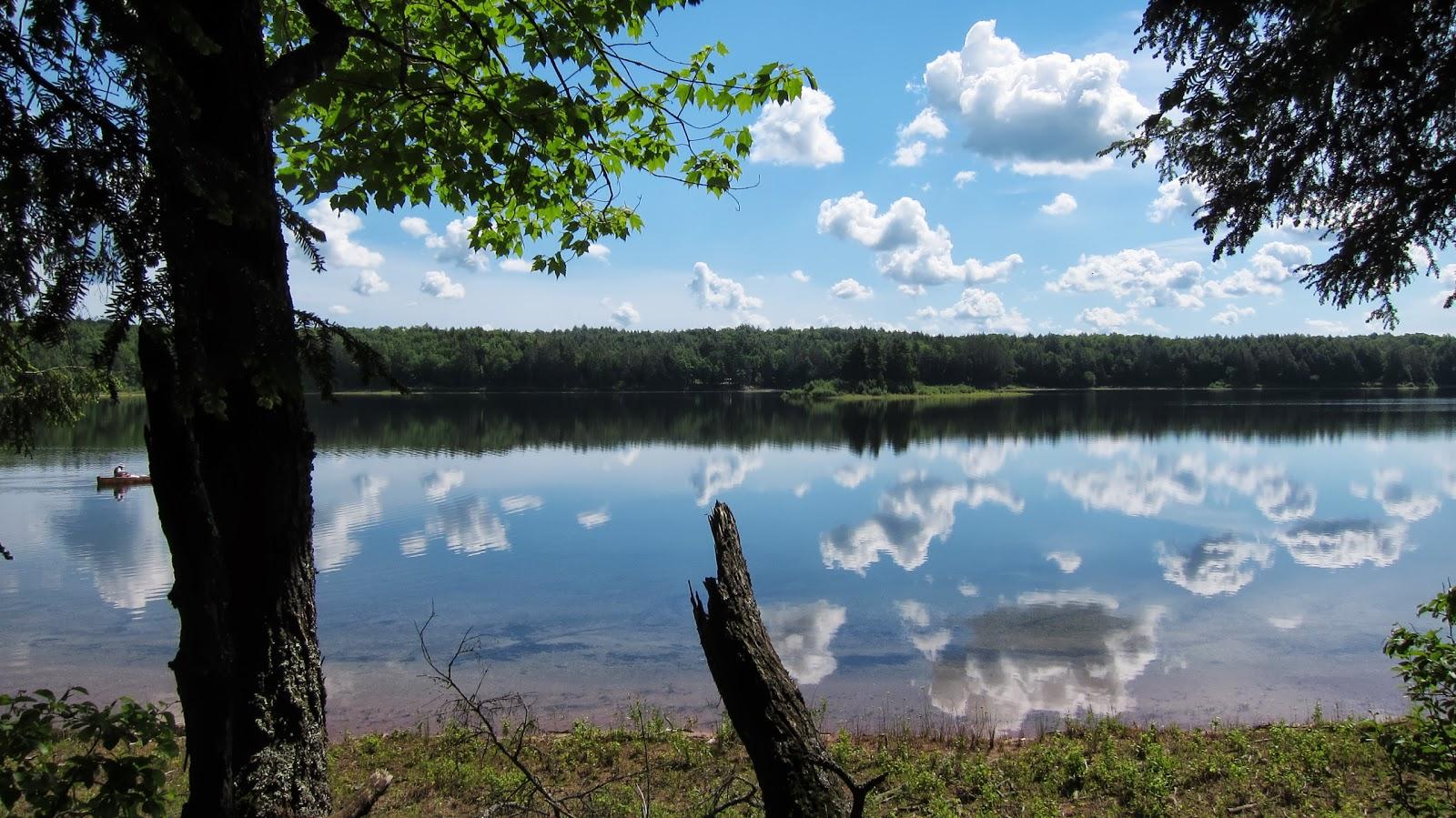 Rambling Hemlock The Sylvania Wilderness Of Michigan