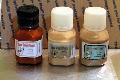 East Coast Yeast ECY19 B. custersianus, ECY24 B. naardensis, and ECY30 B. nanus